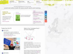 Quanto vale il sito web salto-youth.net?